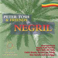 Peter Tosh & Fri…