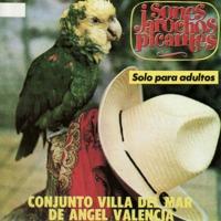Conjunto Villa Del M…