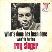 Ray Singer