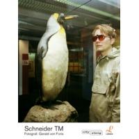 Schneider TM