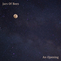 Jars Of Bees