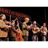 The David Thom Band