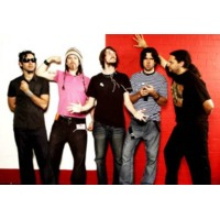 The Panda Band