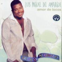 Luis Miguel del Amar…