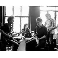 Steve Wynn & The…
