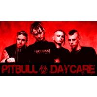 Pitbull Daycare