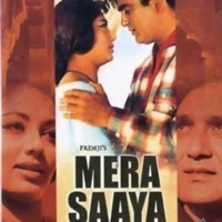 Mera Saaya (Cast)