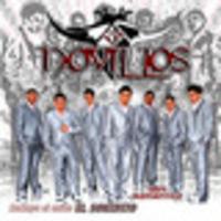 Novillos Musical