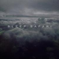 Sleep Safari