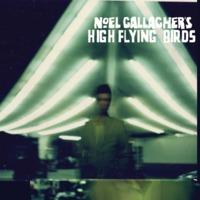 Noel Gallagher's Hig…