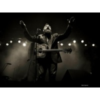 The David Mayfield P…